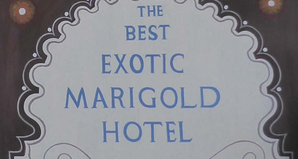 Best-Exotic-Marigold