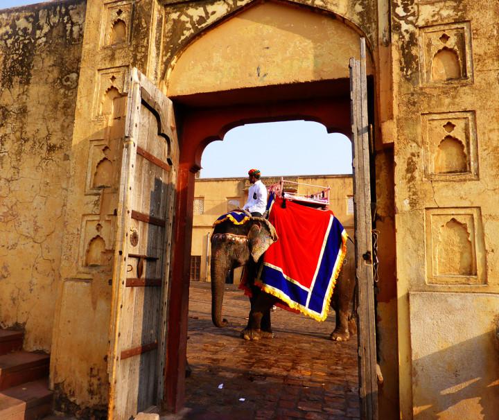 Amber-fort-Rajasthan