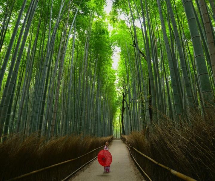 Arashiyama, Kyoto bt walter-mario-stein