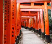 Torii Gates, Kyoto