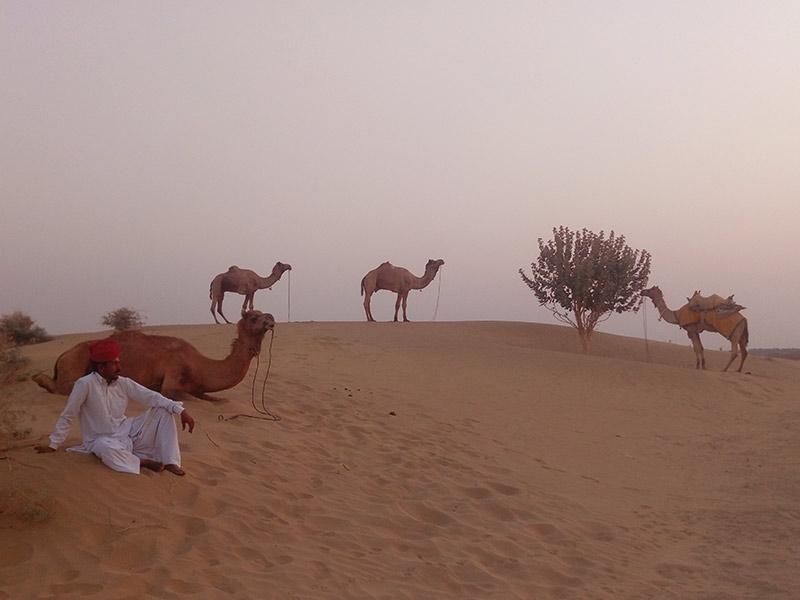 Desert-Festival-Jaisalmer-005