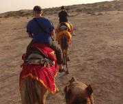 Desert-of-Rajasthan002