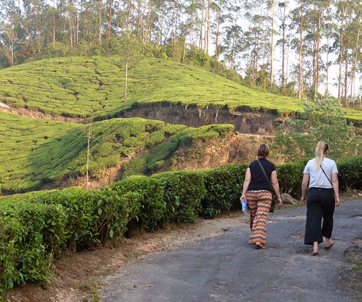 Kerala-Tour1