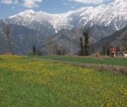 Village in Dhauladhar Valley