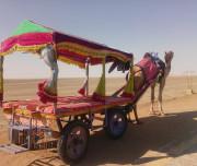 Gujarat-Textile-Tour-1